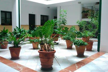 Apartamento tranquilo en la Judería - Sevilha