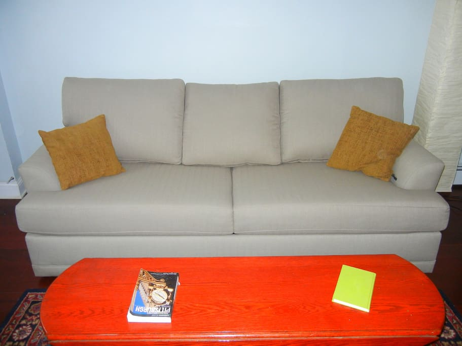 Queen size fold out sofa.