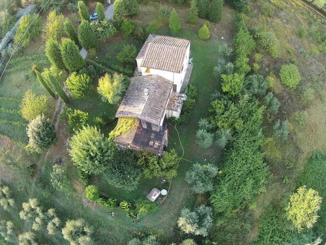 Ulivi Romani, la pace in Sabina. - Poggio Mirteto - Rumah