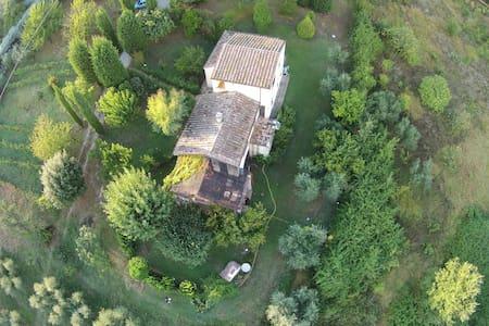 Ulivi Romani, la pace in Sabina.