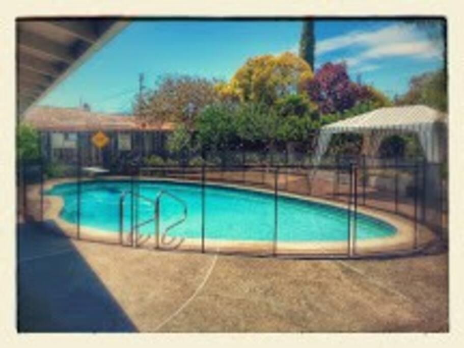 Backyard pool area.  Great to swim in summer.