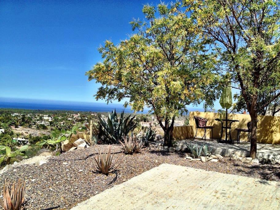 Cactus Patio with Panoramic View
