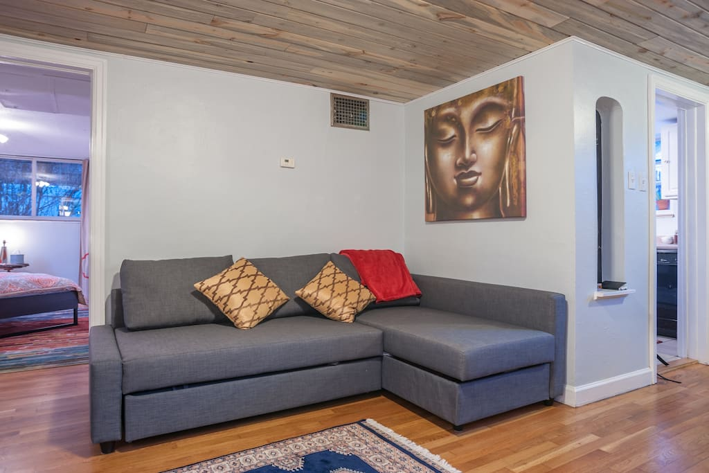 Sofa folds out to a full size bed. check out the blue stain knotty pine ceiling.