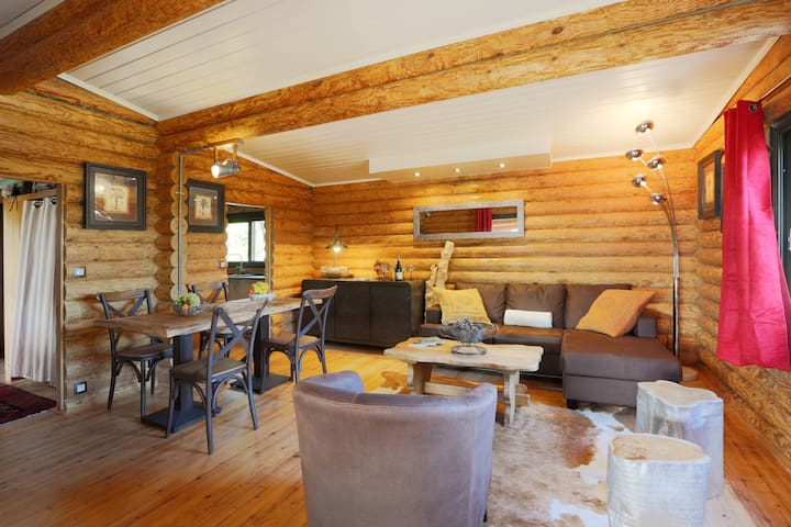 Amazing wood chalet in Vence