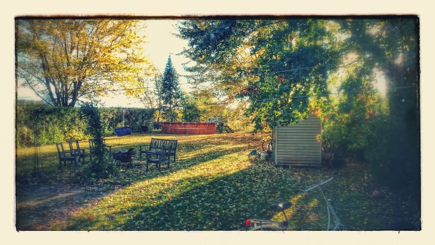 Backyard on a Fall day