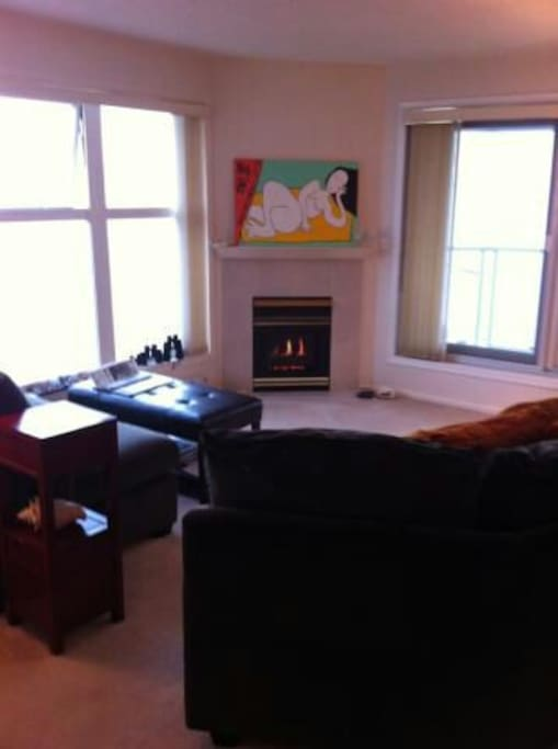 Gas fireplace in living room overlooking ocean