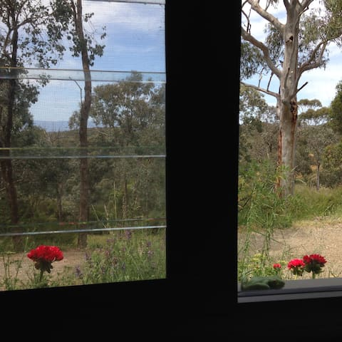 Kitchen overlooks magnificent eucalypts