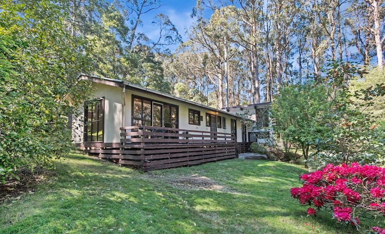 SUNNY ACRES WITH CLASSIC 1960S HOME