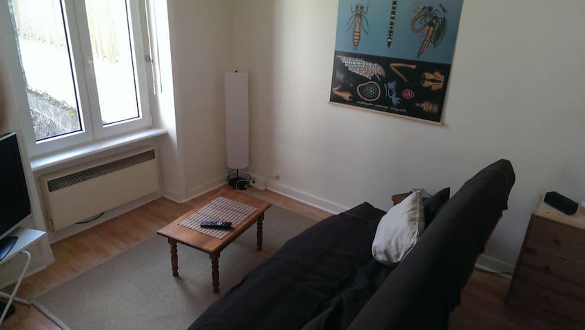 Studio 22 m2 agréable, lumineux en hyper centre - Quimper - Appartement
