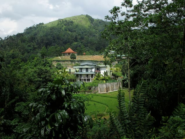 The Paddyfield Hideaway and Octagon - Gampola - Huvila