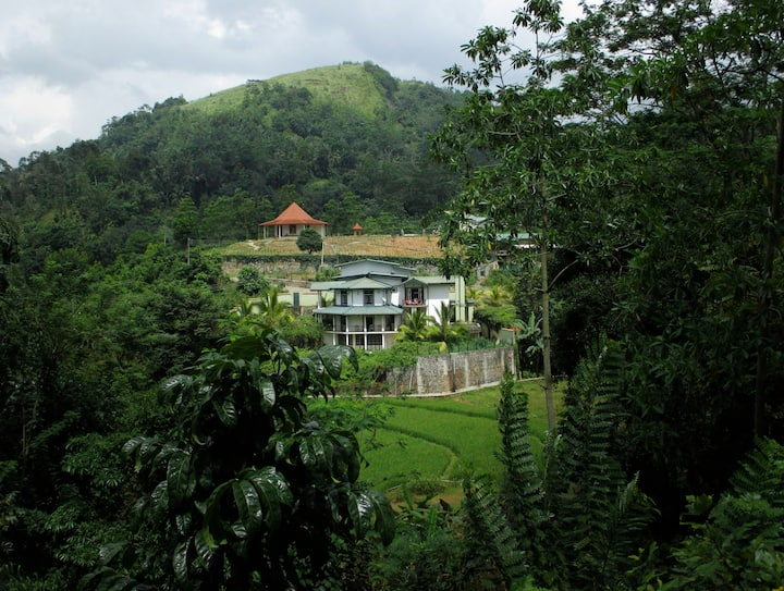 The Paddyfield Hideaway and Octagon