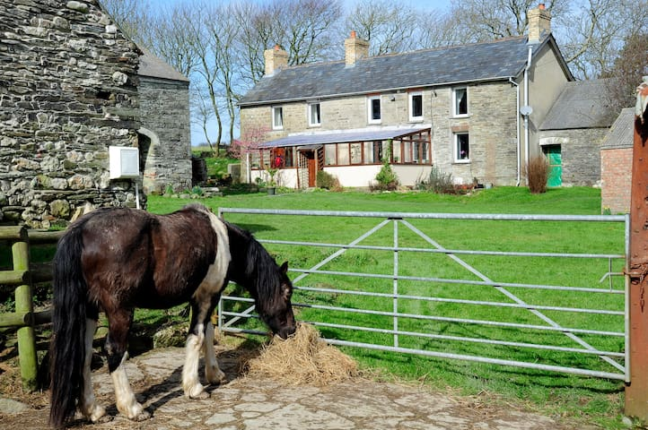 Old Stone Farmhouse in West Wales - Penparc - Szoba reggelivel