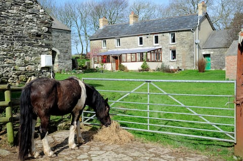 Old Stone Farmhouse in West Wales 2