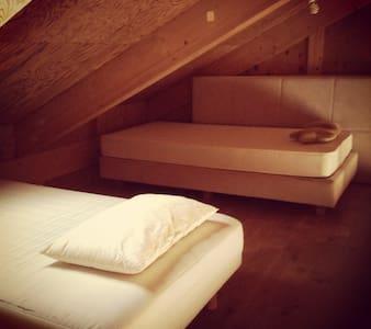 Attic in cottage, getaway frm Tokyo - Hanno - Rumah