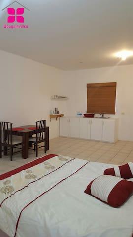 Piarco studio apartment