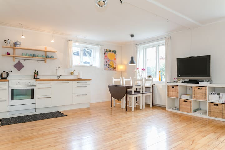 Spacious apartment + own terrace