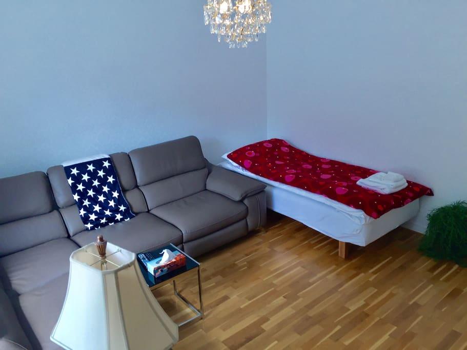 Living room. Divan sofa and bed 90x200cm.
