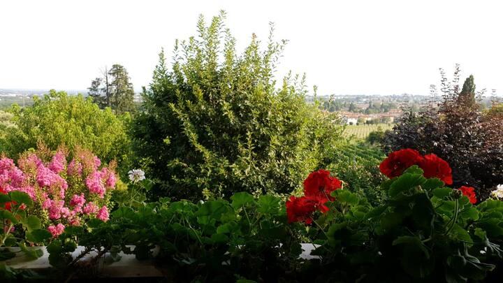 La Collina Delle Acacie: natura e tranquillità.