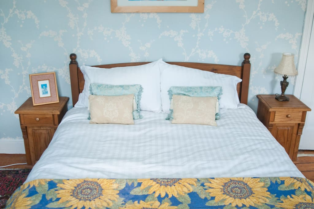 Bright and large double room (16 sq m)