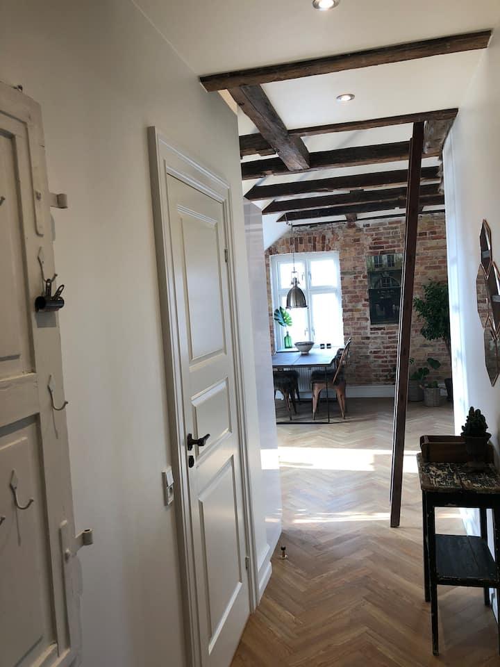 Newly renovated loft apartment in Copenhagen
