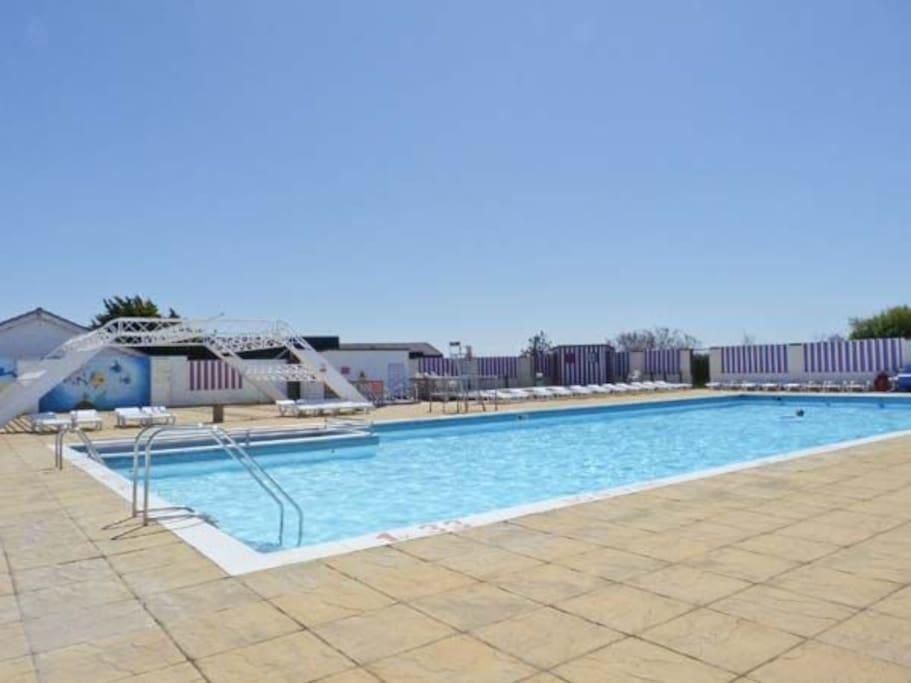 Full size heated pool with loungers