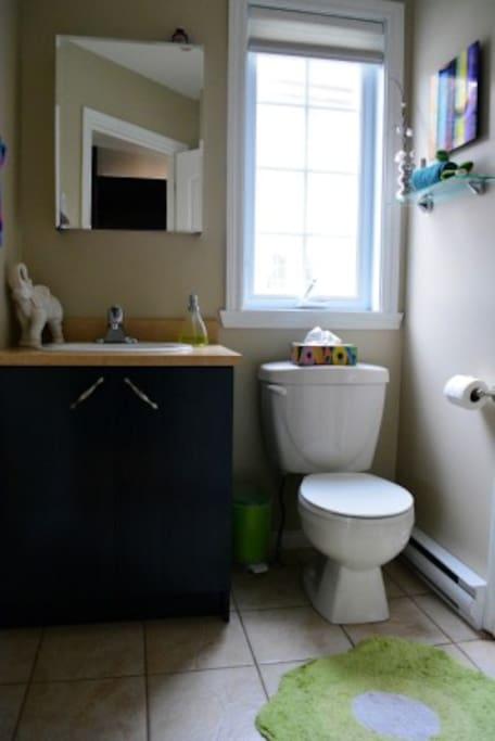 Le coeur des cantons de l 39 est maisons louer granby for Fumer dans la salle de bain