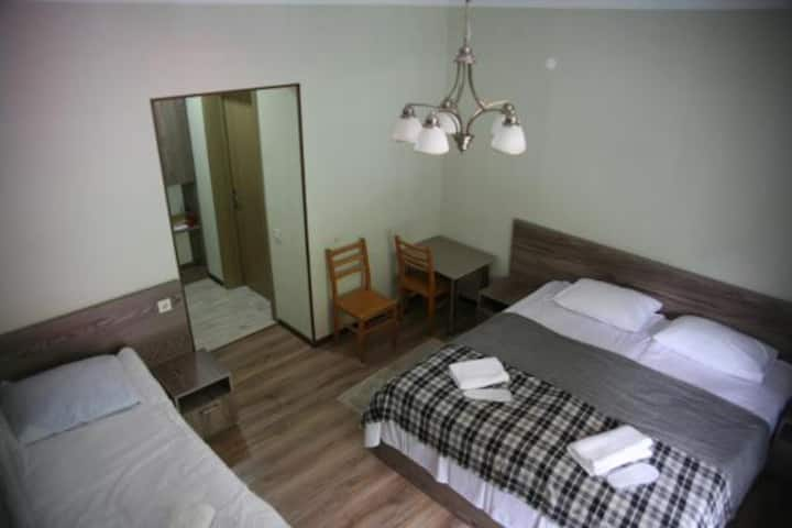 Garden Hotel Pasanauri room 1