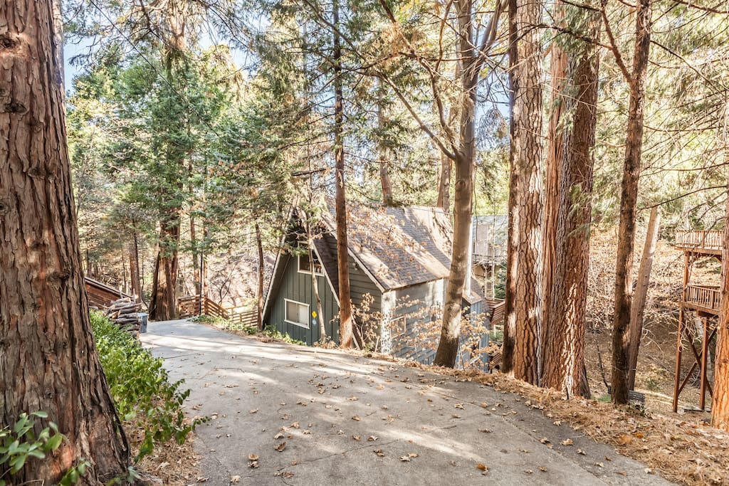 Driveway leading to the Lake House with ample parking