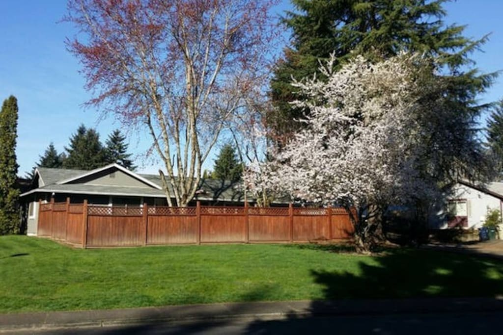 Simple Room Near Intel And Nike Houses For Rent In Beaverton Oregon United States