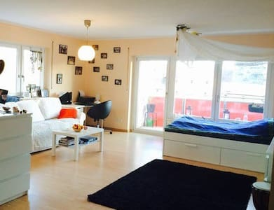Sunny charming spacious central... - Nuremberg - Leilighet