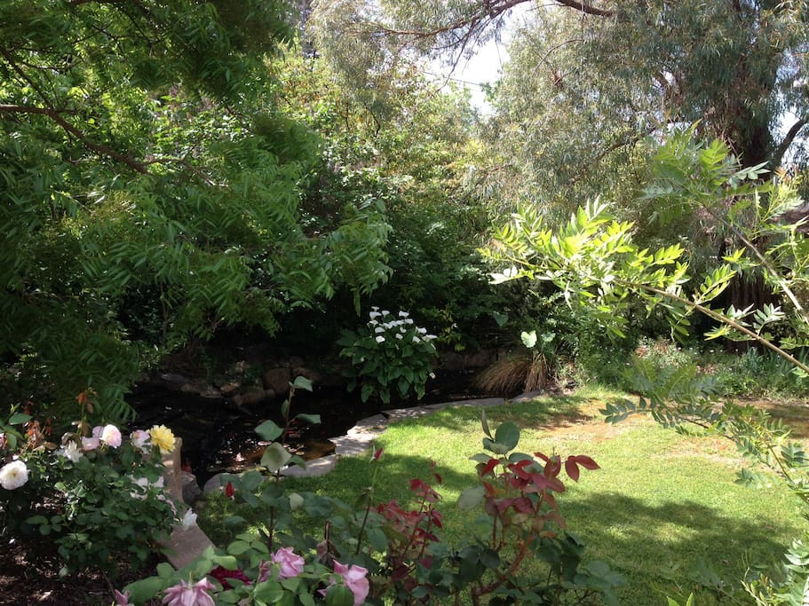 View into the garden and the pond from the studio