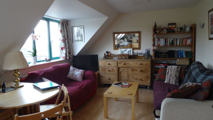 Cosy single bedroom/apartment CB4 - Cambridge - Apartamento