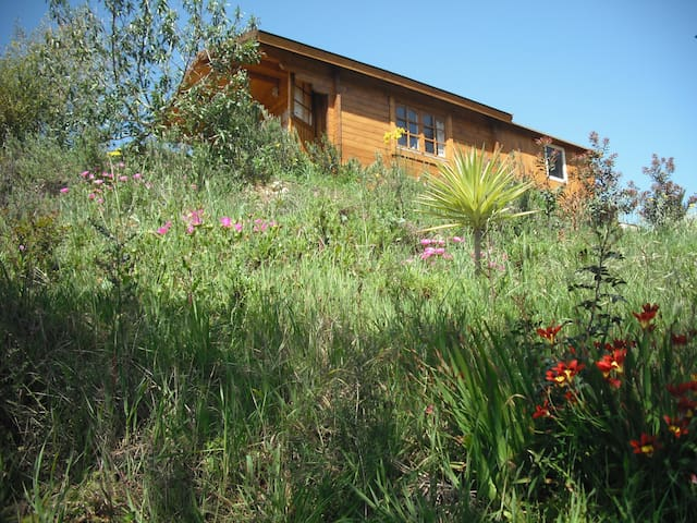 Wooden Cabin / Algarve Westcoast - Aljezur Municipality - Cabaña