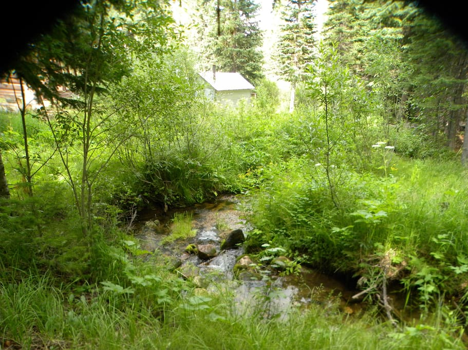 A small stream with trout that wanders through property
