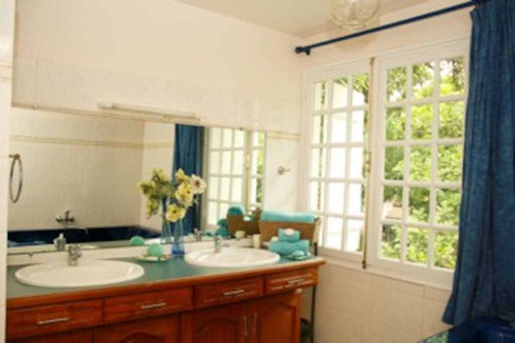 Salle de bain  de la chambre Karukera, Habitation l'Oiseau
