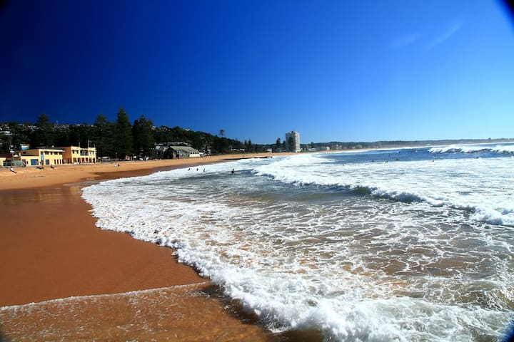 Luxury by the beach - Collaroy - Casa