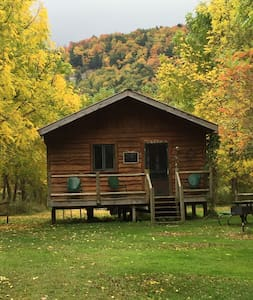 """Catskill Mountains """"Mohican"""" Cabin - Downsville - Ház"""