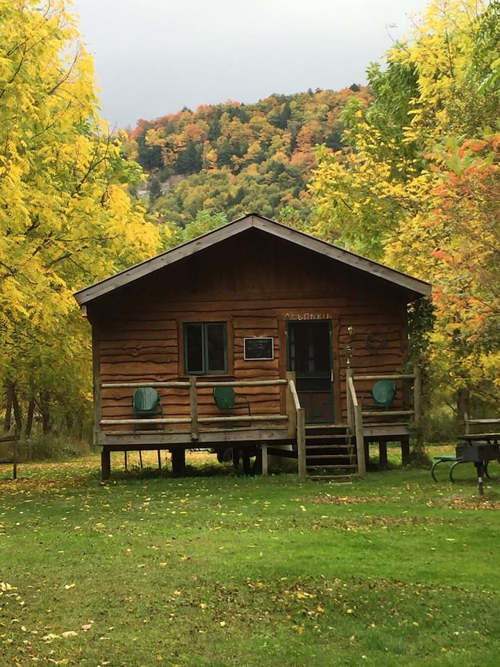 """Catskill Mountains """"Mohican"""" Cabin"""