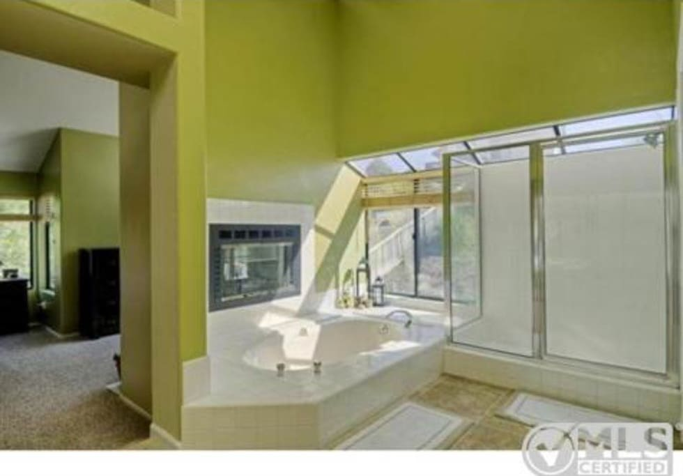 Soak tub with fireplace in master bath