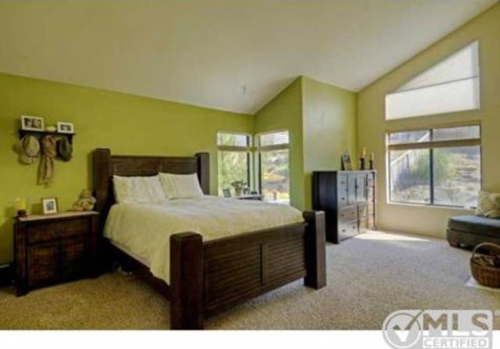Vaulted ceilings and lots of natural light in master bedroom