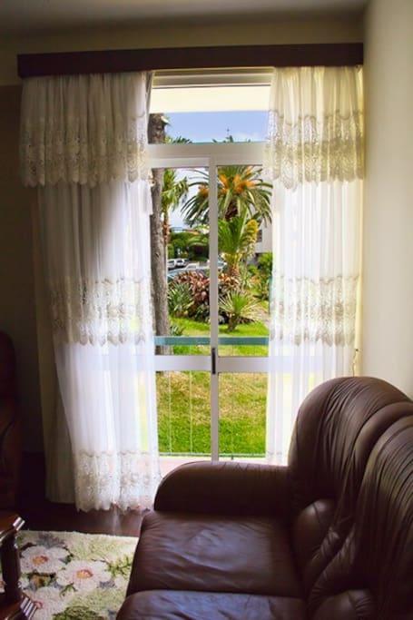 The Living room window