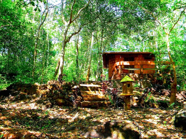 Romantic Cabin in the Woods with Pool & B'fast - ollaulim