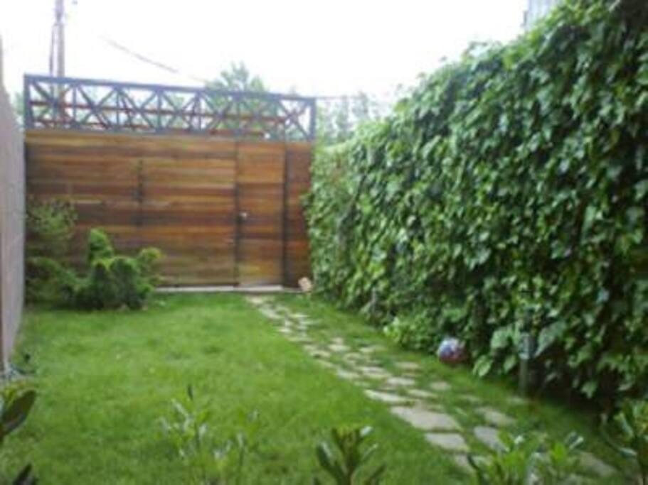 Pequeño jardín ubicado en planta baja