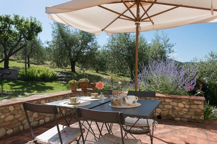 Romantic apartment in Chianti special price 2020!