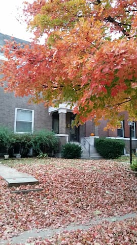 Cozy Basement Apt in Heart of StL - St. Louis - Apartamento