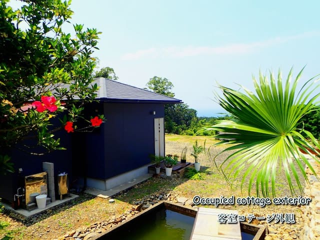 屋久島コテージ 空海   森の中に佇み 窓からは 一面 空と海!