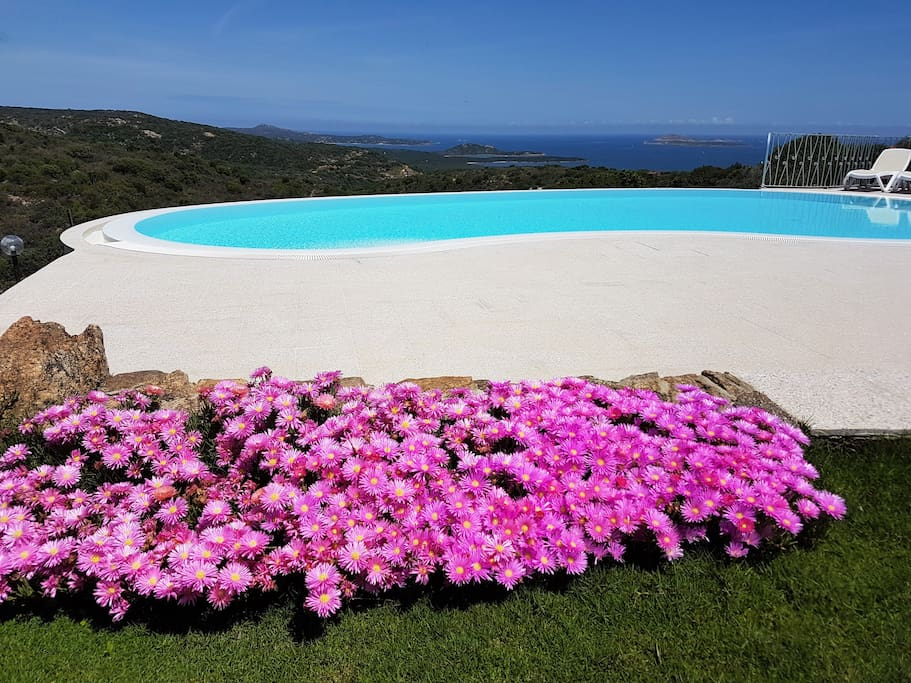 The private pool - seaview and flowers