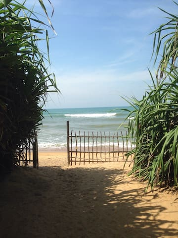 Lavila Beach Resort - direct at the Beach - Wadduwa - Bed & Breakfast
