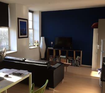 Comfortable Apartment in The Hague's Centre - Den Haag