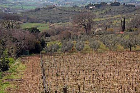 Home in Chianti hills ideal for visiting Tuscany! - Cerbaia